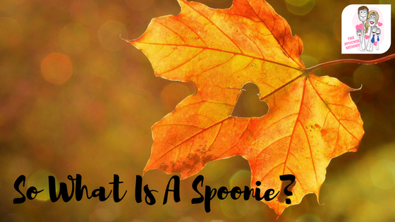 So What Is A Spoonie?